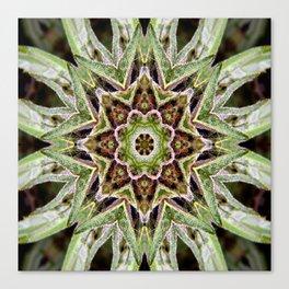 Canna-Mandala Canvas Print