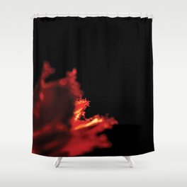 Passion in red 1 Shower Curtain
