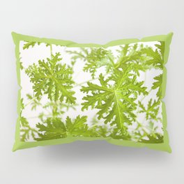Pelargonium citrosum plant foliage macro Pillow Sham