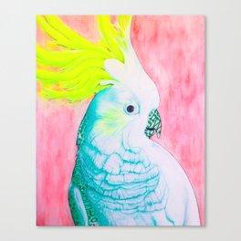 Cockatoo Dreams Canvas Print