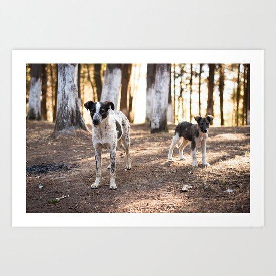Dos Perros Art Print