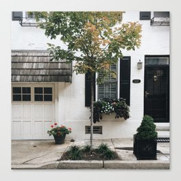 City Tree, Philadelphia Canvas Print