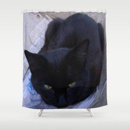 Jinx in the Box Shower Curtain