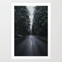 Where the Pines Extend  Art Print