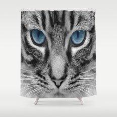 Charcoal Grey Kitty Shower Curtain