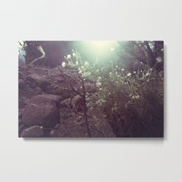 Magical Beings - New Mexico Metal Print