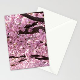 Cherry Blossom Trees Stationery Cards