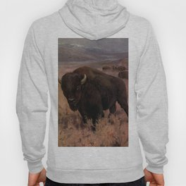 Vintage American Buffalo Painting (1909) Hoody