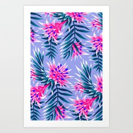 Aechmea Fasciata - Light Blue / Pink Art Print
