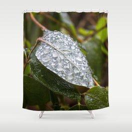 Ice on Honeysuckle Shower Curtain