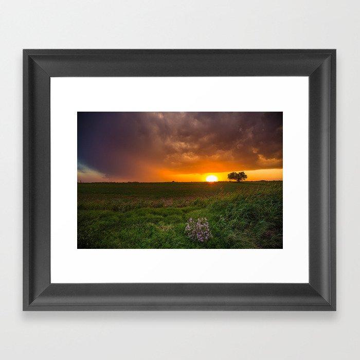 Autumn Sunset - Flowers and Tree on Oklahoma Plains Gerahmter Kunstdruck