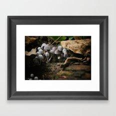 Mushrooms!! white mushrooms! Framed Art Print