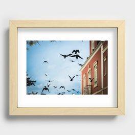 Birds in flight Recessed Framed Print