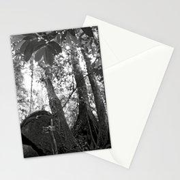 Umbilical Stationery Cards