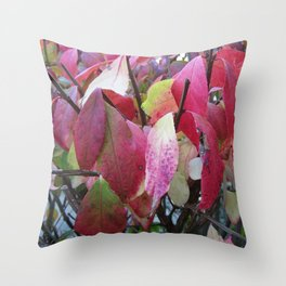 Burning Bush Leaves in Fall Throw Pillow