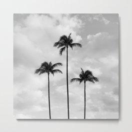 PalmTree Photography | Black and White | Landscape Metal Print