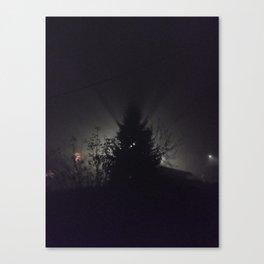 Night's light Canvas Print
