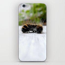 Wannabe Tiger (Fox Moth Caterpillar) iPhone Skin