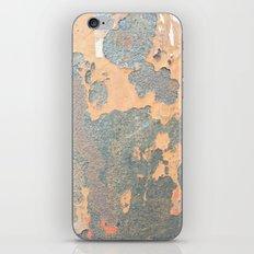 Krugger iPhone & iPod Skin