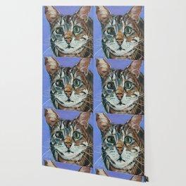 Green Eyed Cat Portrait Wallpaper
