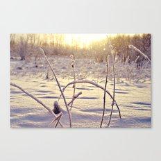 Alaskan Snowfall Canvas Print