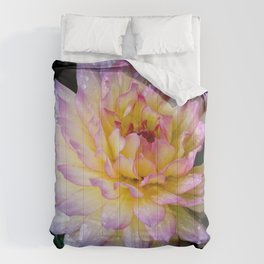 Dahlia Debutante Comforters