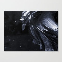 Sakana 10 Canvas Print
