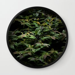 Refreshed Wall Clock