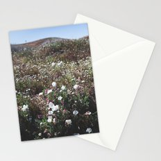 Spring in the Mojave Desert Grasslands Stationery Cards