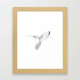 Kolibri sketch Framed Art Print