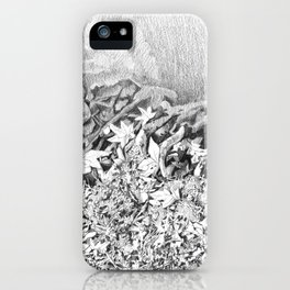 Transitions in nature part 1 iPhone Case