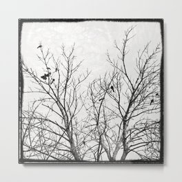 Birds in Branches Gothic Silhouette Metal Print