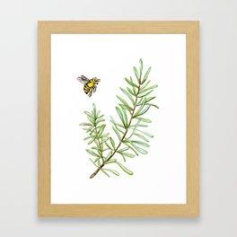 Rosemary and Honey Bee Framed Art Print