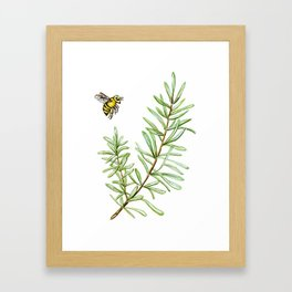 Rosemary and Honey Bee Framed Art Print