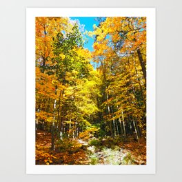 Dry Autumn River Bed Art Print