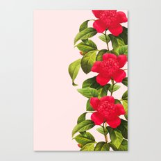 Botanical Light Kiss Canvas Print