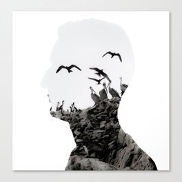 Head with Islas Ballestas birds Canvas Print