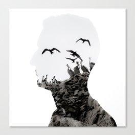 Head with Islas Ballestas birds Canvas Print
