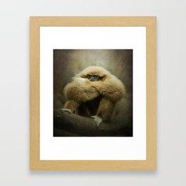 Study of a Gibbon - The Thinker Framed Art Print