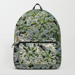 Queen Annes Lace Wildflower in Horicon Marsh Wisconsin Backpack