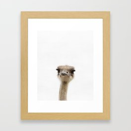 Ostrich, Baby, Animal, ZOO, Nursery, Minimal, Modern, Wall art Art Print Framed Art Print