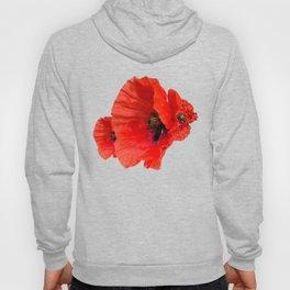 Poppies on Black Hoody