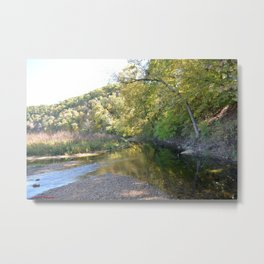 Where Canoes and Raccoons Go Series, No. 26 Metal Print