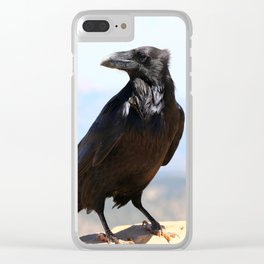 Bryce Canyon Raven Clear iPhone Case