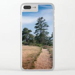Zimmerman Park Clear iPhone Case