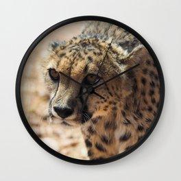 African Cheetah Wall Clock