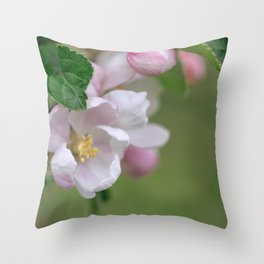Tender Apple Tree Blossoms In Spring Throw Pillow