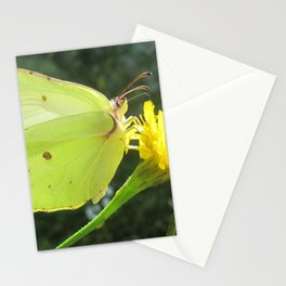 Brimstone butterfly and yellow flower Stationery Cards