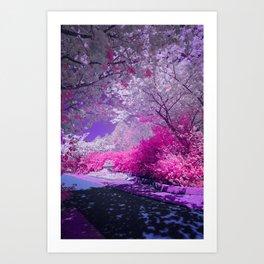 Cranberry Corner Art Print