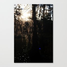 Swamp of the Risng Sun Canvas Print